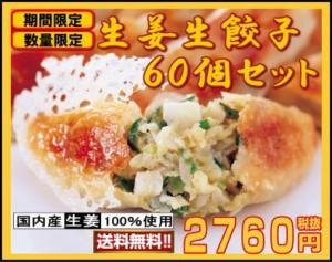 送料無料 生姜生餃子 60個セット