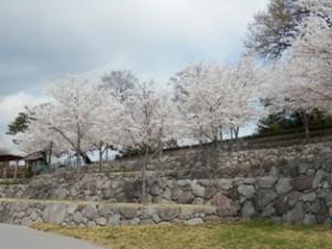 臨江閣の近くには、公園が広がります。