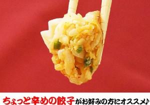 ピリ辛キムチ餃子