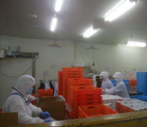 たくさんの商品や梱包資材に囲まれての作業です。