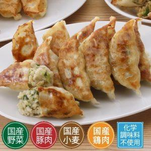 春キャベツの野菜生餃子
