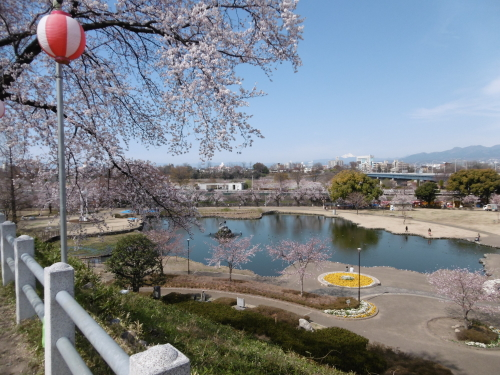 前橋公園 さちの池