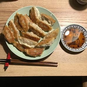9日目 お肉たっぷり生餃子