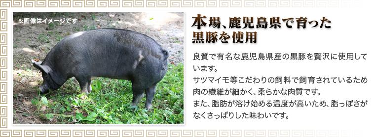 黒豚生餃子