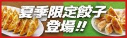 夏季限定餃子登場!
