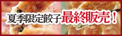 夏季限定餃子最終販売